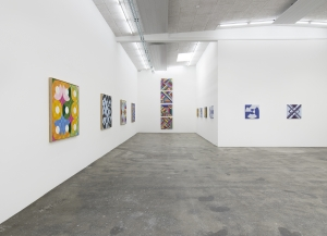 Eduardo Terrazas, Simplicity is the Glory of Expression, Installation view, 2017